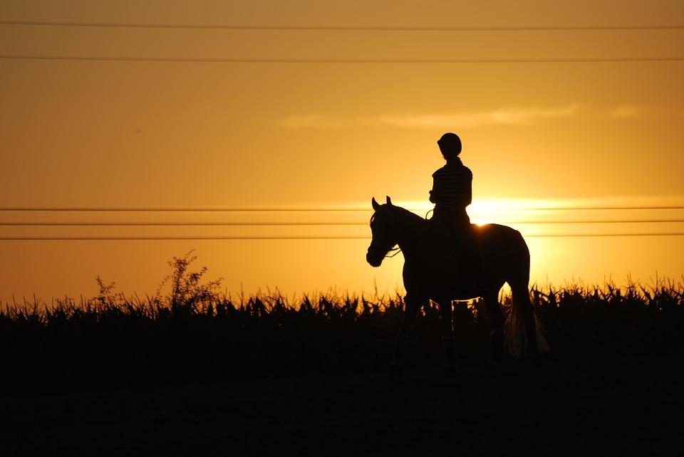 horseback-riding-1576108_960_720